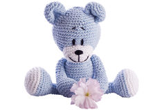 Teddy bear stuffed animal with pink blossom Stock Image