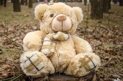 Teddy Bear-stuk speelgoed Stock Foto's