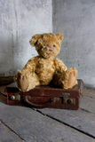 Teddy bear on suitcase Royalty Free Stock Photo