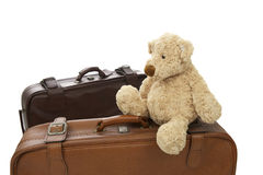 Teddy bear with suitcase Stock Images