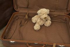Teddy bear in suitcase Royalty Free Stock Photo