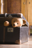 Teddy Bear In Suitcase Royalty Free Stock Images