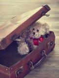 Teddy Bear In Suitcase Royalty Free Stock Photos
