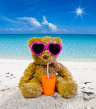 Teddy bear in the beach Royalty Free Stock Images