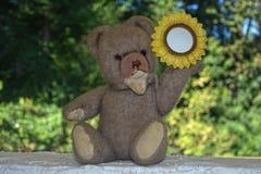 Teddy bear with sunflower frame Royalty Free Stock Photos