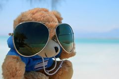 Teddy bear on sunny day against the background of the sea. Toy in glasses with reflection of palm trees and beach. Dead Sea Israel. Teddy bear on a sunny day royalty free stock photos