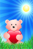 Teddy bear on sunny Summer background Stock Image