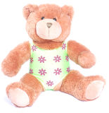 Teddy bear in swimming costume Stock Images