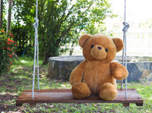 Teddy bear on swing. Royalty Free Stock Images