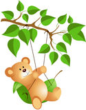 Teddy bear swinging from a tree Royalty Free Stock Photo