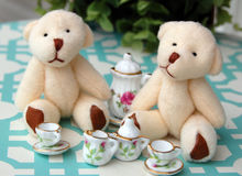 Teddy Bear Tea Party. Two white teddy bears having a tea party Royalty Free Stock Images