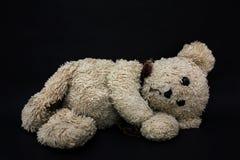 Teddy Bear. On a black background Stock Photos