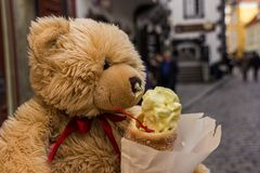 Teddy bear. And ice cream Royalty Free Stock Image