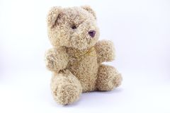 Teddy Bear. On a white background Stock Images