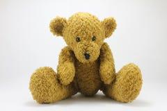 Teddy Bear. On a white background Stock Photos