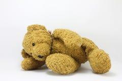 Teddy Bear. On a white background Stock Photo