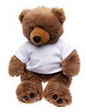 Teddy Bear in a Tee Shirt Stock Images