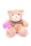 Teddy bear with thank you note. A cute little smiling soft teddy bear toy with a pink thank you note. Image isolated on white studio background Stock Photography