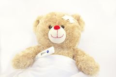 Teddy bear with a thermometer Royalty Free Stock Photo