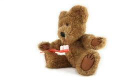 Teddy Bear With Toothbrush Stock Photos