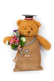 Teddy bear toy clutching a flower in its arms. Isolate on white background Royalty Free Stock Image