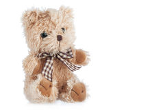 Teddy-bear toy. Isolated on a white background Royalty Free Stock Photography