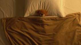 Teddy bear toy lying in bed covered with blanket, childhood memories, innocence. Stock footage stock footage