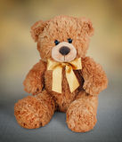 Teddy bear toy picture Stock Photos