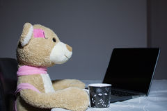 Teddy bear toy on the table Stock Image