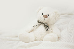 Teddy bear. Toy for Valentine's day Stock Image