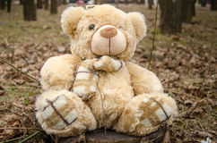 Teddy bear toy stock photos