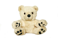 Teddy bear. Toy teddy bear on white background Stock Images