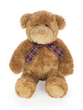 Teddy bear toy. On white background royalty free stock photography