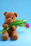 Teddy bear with tulips on the blue background Stock Image
