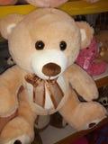 Teddy Bear u. x22; Brown& x22; lizenzfreie stockbilder