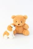 Teddy Bear und braune Hundepuppen, braune Ohren Stockfotos
