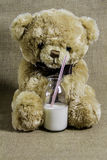 Teddy Bear With une bouteille de lait photo stock