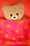 Teddy Bear unter Abdeckung Lizenzfreie Stockbilder