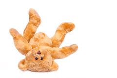Teddy bear, upside down Royalty Free Stock Photography