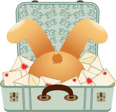 Teddy bear upside down in the love letter suitcase Stock Photography