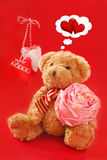 Teddy bear for valentines Royalty Free Stock Photo