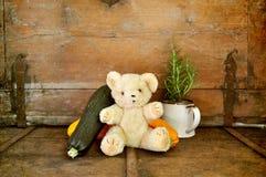 Teddy bear and vegetables. Old teddy bear enjoys vegetables Royalty Free Stock Images