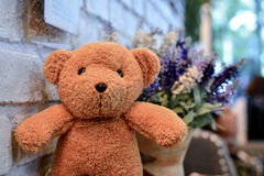 Teddy bear with vintage blur flower stock image