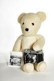 Teddy bear with vintage camera and photos Stock Image