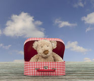Teddy bear in a vintage carton suitcase, blue sky with clouds Stock Photo