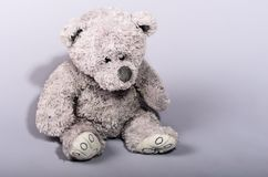 Teddy bear waiting for a friend. On a gray background Stock Image