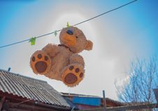 Teddy bear washing and drying. Sky sunshine clothespins toy brown wet stock image