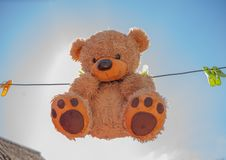 Teddy bear washing and drying. Sky sunshine clothespins toy brown wet royalty free stock photo