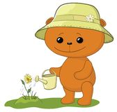 Teddy bear watering a flower Royalty Free Stock Image