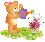 Teddy Bear Watering Flowers Stock Images